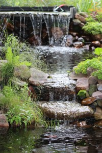 Spring is on it's way. Soon water will be flowing again and the new growth of spring will be emerging from a long dormant sleep.