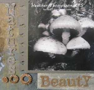 umwow natures beauty closeup