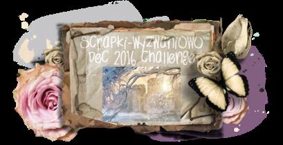 sw-board-12-2016