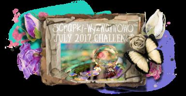 sw-board-7-2017