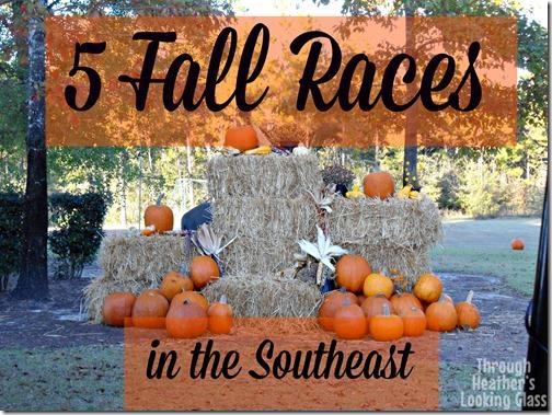 fall races
