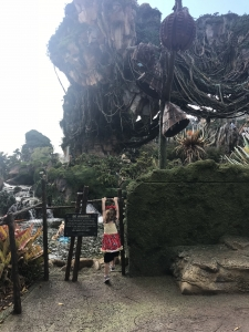 Tips for Disney's Pandora With A Preschooler