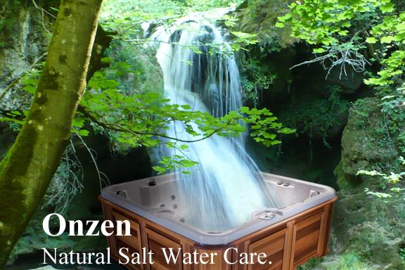 Onzen Salt Water System Lansing MI HeatN Sweep