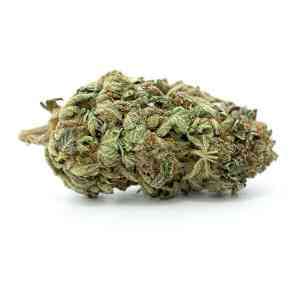 Buy Purple Kush Weed Online