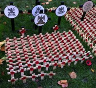 Remembrance Crosses 3