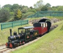 Muffin train