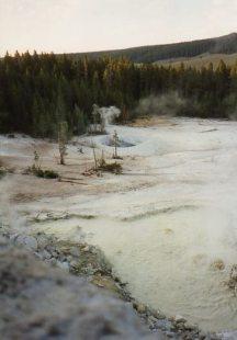 close up Yellowstone NP