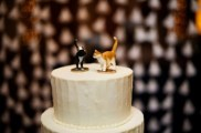 Cats on Cake
