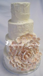 Heavenly Sweets Spakeling and large petal cascading flower