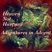 Adventures in Advent