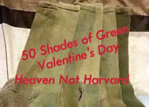 Heaven Not Harvard - learning how to see Valentine's Day in a new light in 50 shades of green
