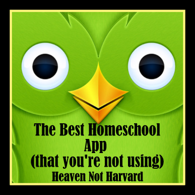 This app teaches reading skills, problem solving, grammar, listening skills and so much more. Heaven Not Harvard