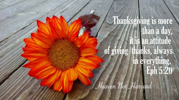Do you have a Thanksgiving attitude just on the fourth Thursday in November or should thanksgiving be an attitude we have for more than just one day?