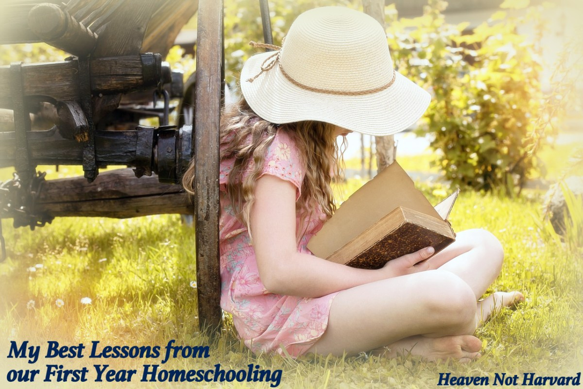 My Best Lessons from our First Year Homeschooling