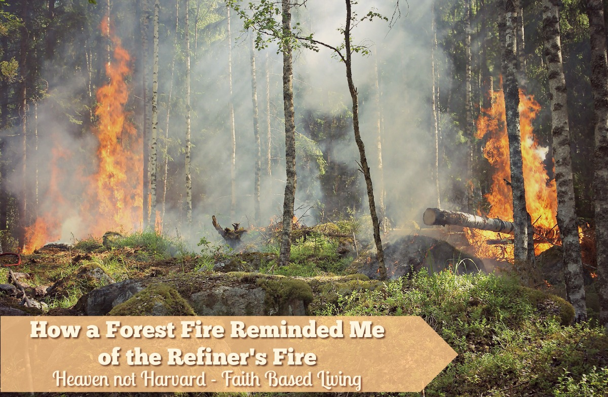 How a Forest Fire Reminded Me of the Refiner's Fire
