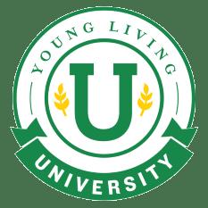 yl-academy-logo