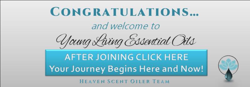 congratulations let the journey begin