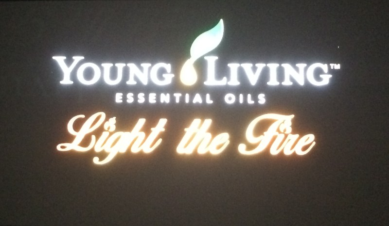 YL Light the Fire