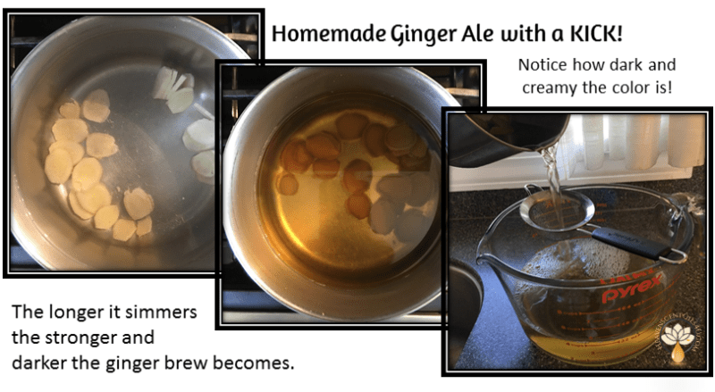 homemade-gingerale-with-a-kick