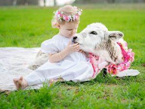 HT-toddler-cow6-cf-170127_4x3_992
