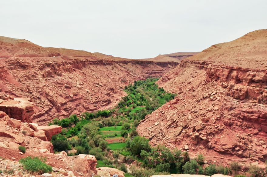 maroc (312 of 467)