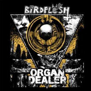 Birdflesh/Organ Dealer – Split