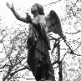 Redationsteam - darkangel