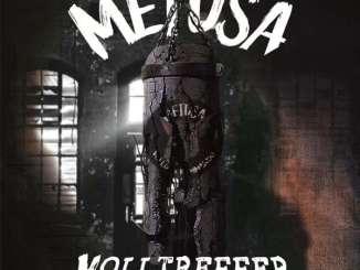 Metusa