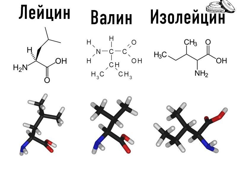 BCAA - валин, лейцин, изолецин