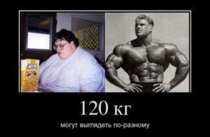 120kg