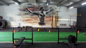 arnold-gym