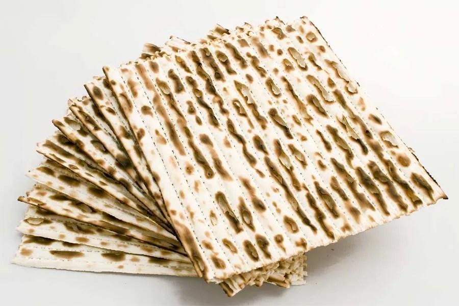 פרשת בא אין אלטרנטיבה ויהדות אלטרנטיבית