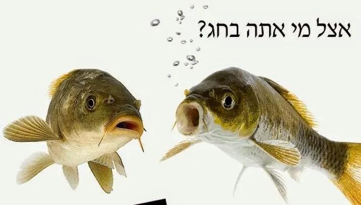 פרשת שמיני על דגים ותלמידי חכמים