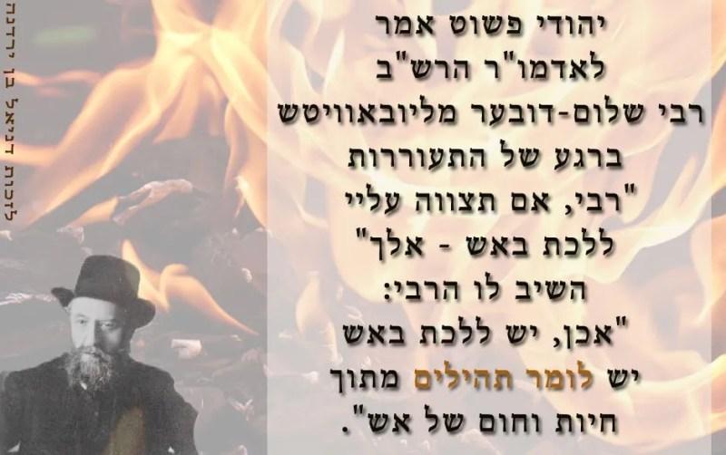 """אש התהילים האדמור הרש""""ב"""