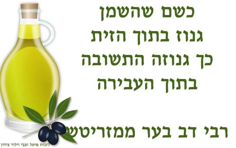 רבי-דב-בער-ממזריטש-משפט-יומי