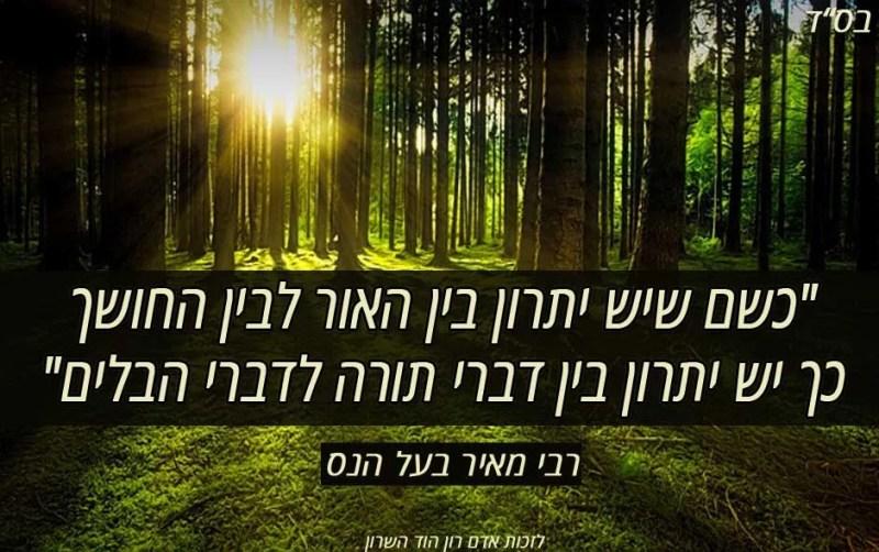 ציטוט רבי מאיר בעל הנס