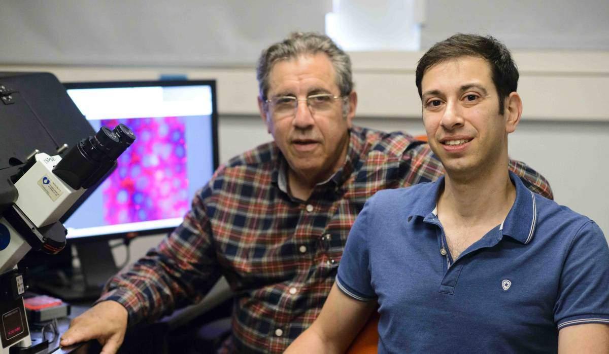 יאיר אלישע ופרופ' בני גיגר. גילו מנגנוןחדש של נדידה פולשנית של תאי סרטן