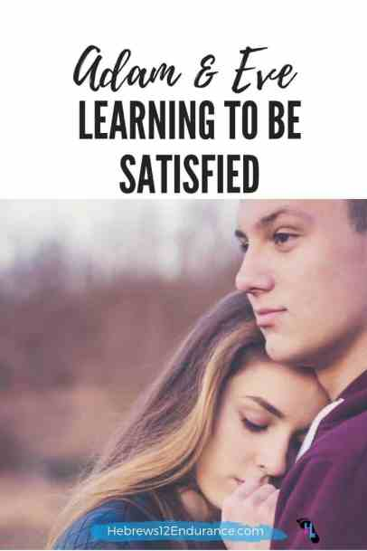 Learning to be satisfied