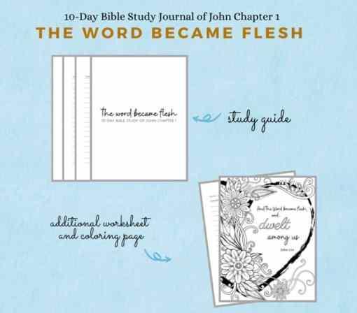 John 1 Bible Study journal