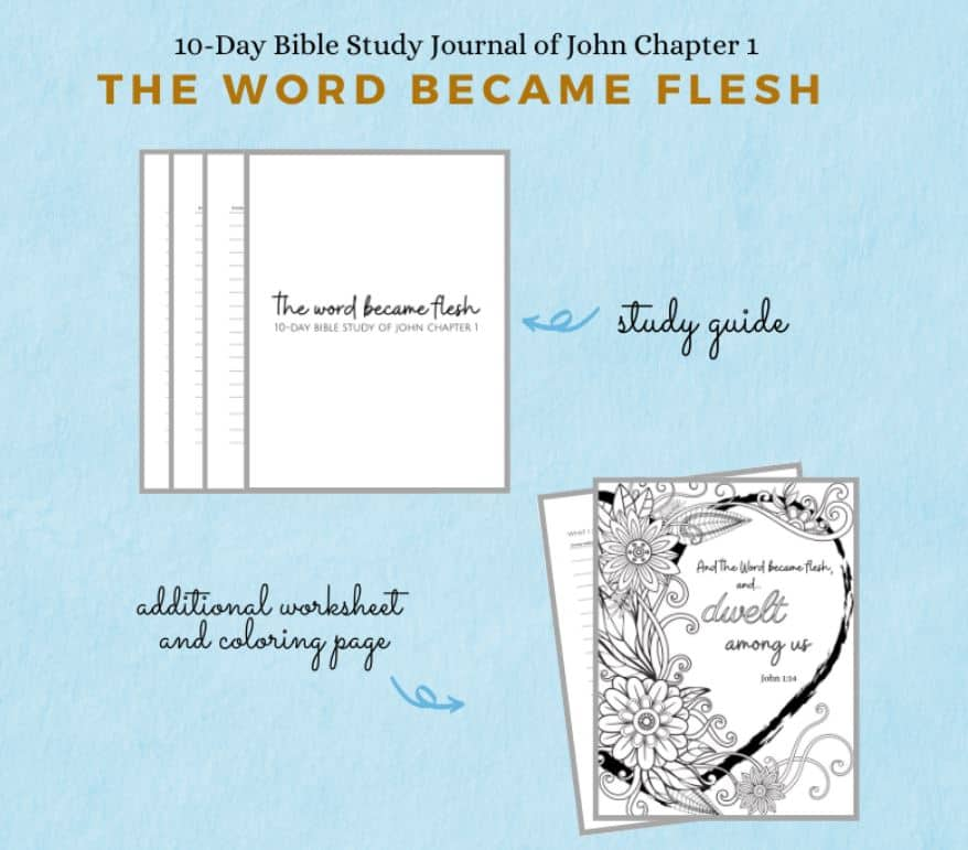 John 1 Bible Study journal