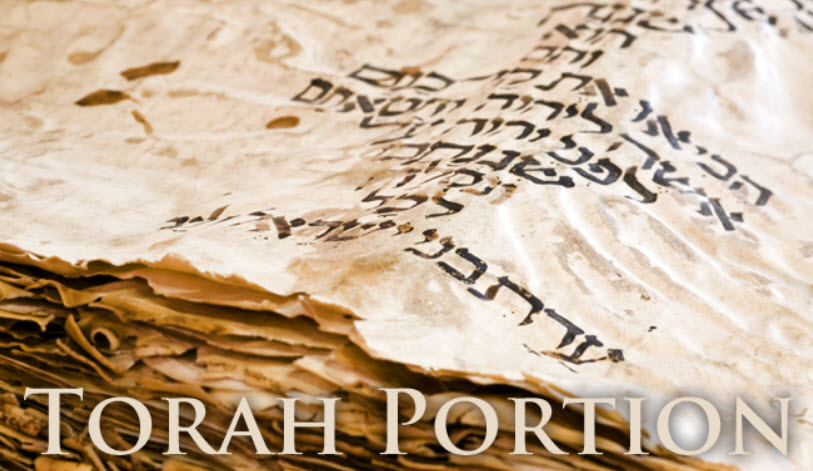 Learn torah portion online dating
