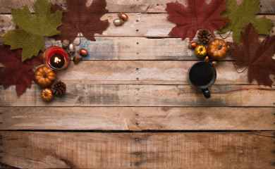 acorns autumn autumn decoration autumn leaves