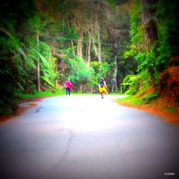"""""""Trails"""" Fotosecuéntico – No. 13"""