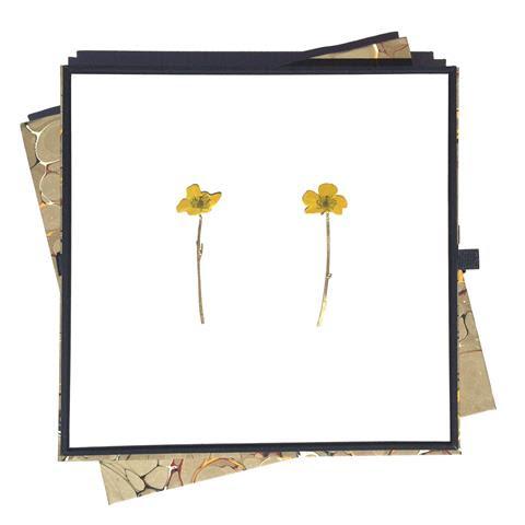 Christopher Thompson Royds, Natura Morta : Buttercups, oorsieraden in foedraal, circa 2015, metaal, verf, karton, gemarmerd papier, lint