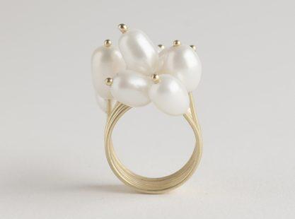 Ambroise Degenève, ring. Foto met dank aan Galerie TACTILe©