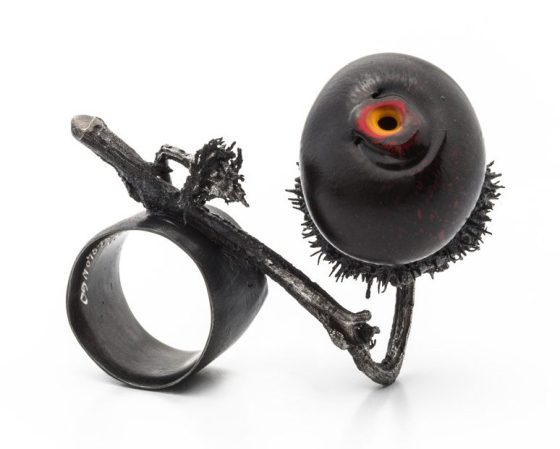 Paolo Marcolongo, ring, 2015. Foto met dank aan Paolo Marcolongo©
