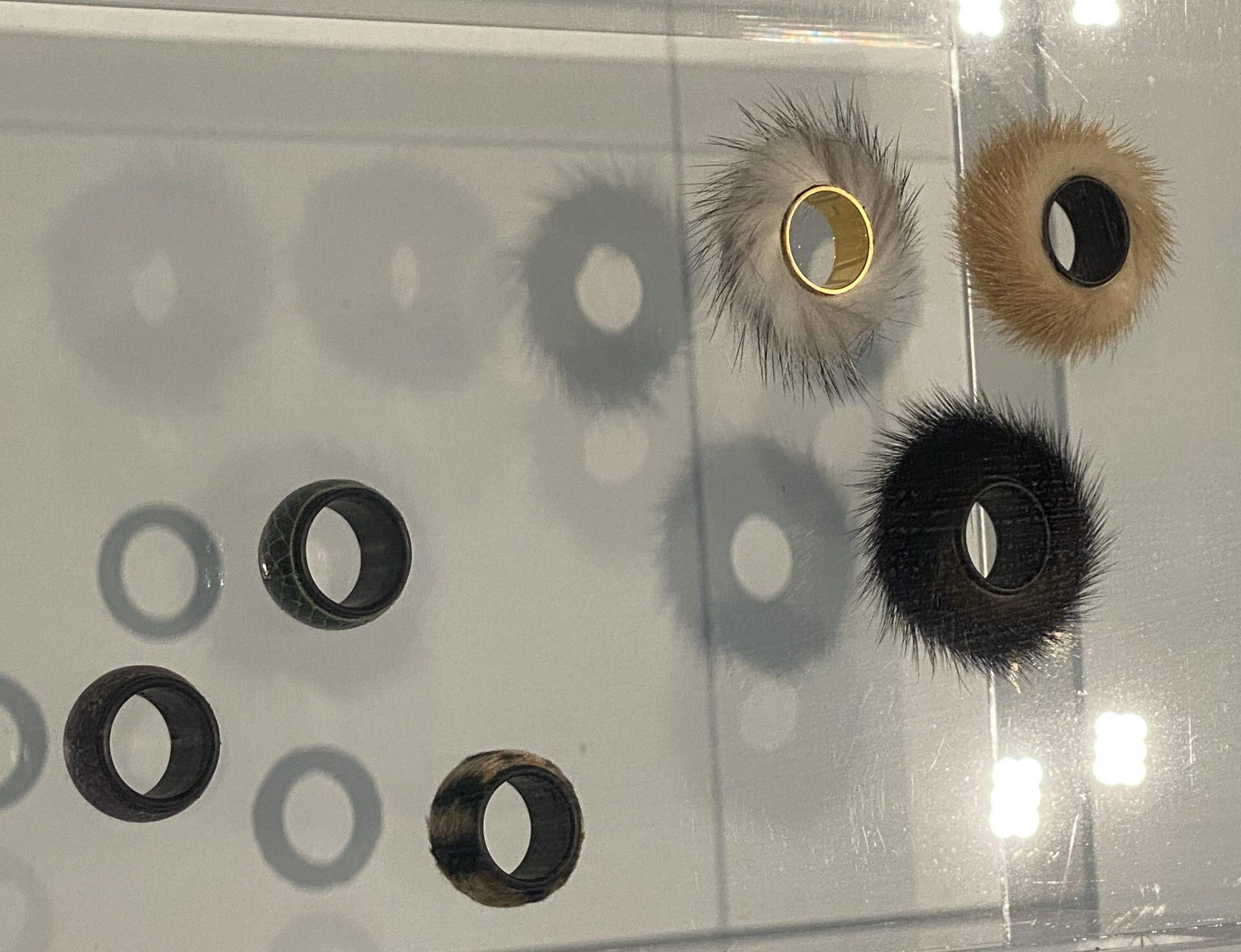 Meret Oppenheim, ringen, Design Museum Den Bosch, 2021. Foto Hans Appenzeller, bont, metaal