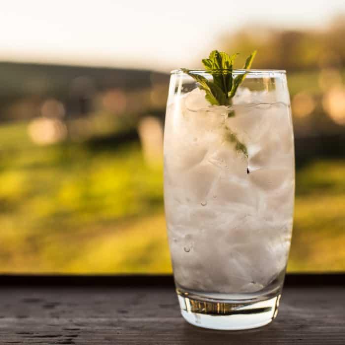 Elderflower & Vodka Cocktail Slush.