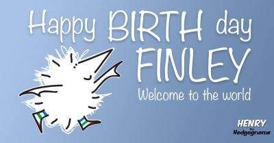 Children's books   Henry the Hedgegnome   Happy birth day Finley