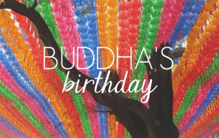 Buddha's Birthday // KOREA